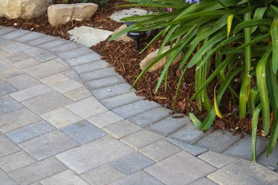 Paver Border Close Up