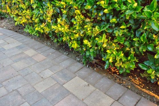 Paver Walkway Close Up